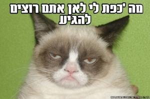 ממ חתול עליזה