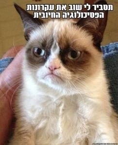 ממ חתול פסיכולוגיה חיובית